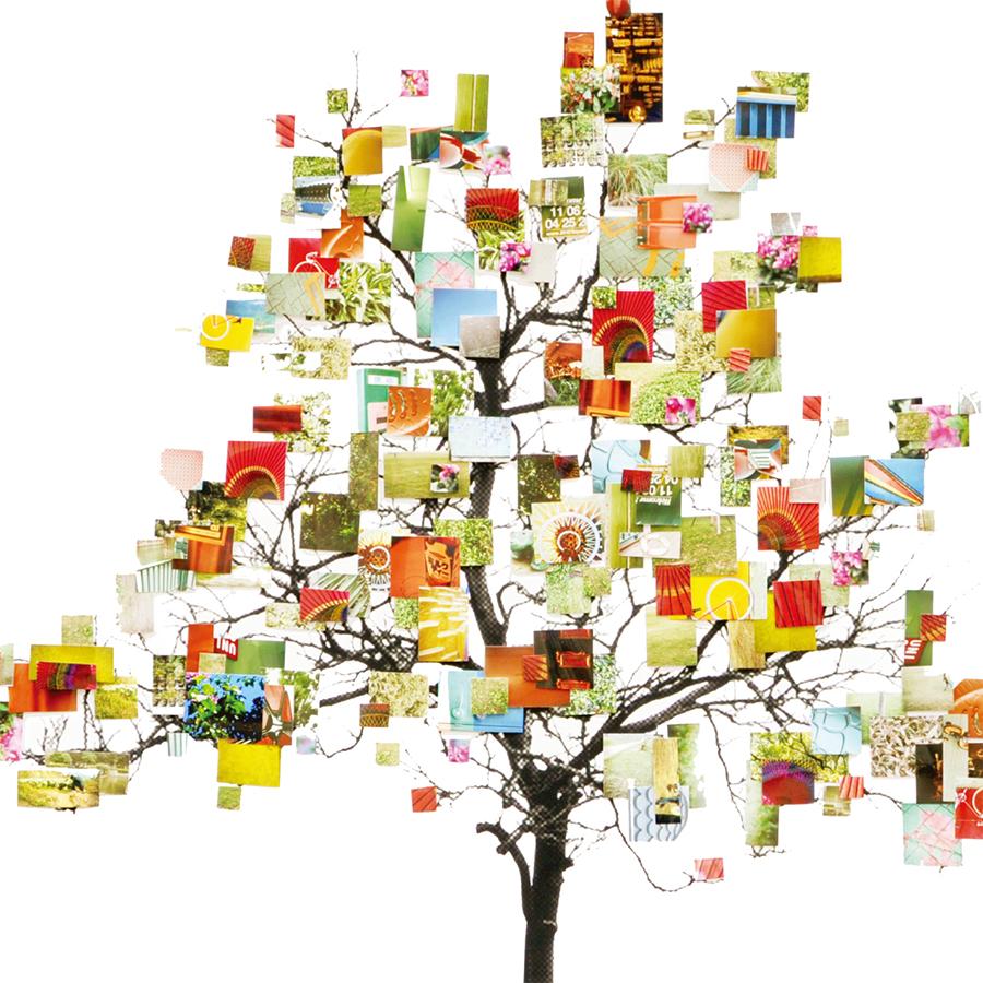 生命樹 Tree of Life